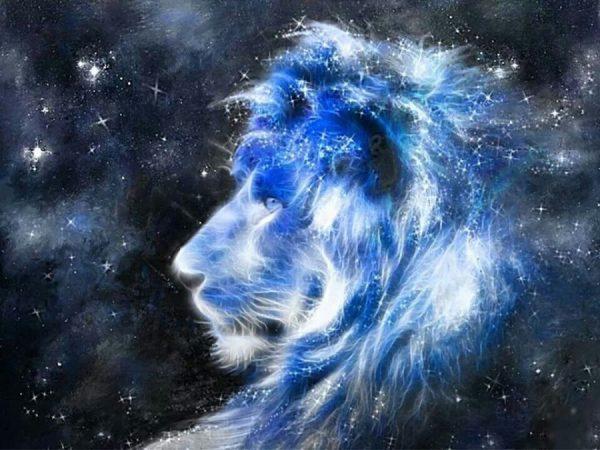 ライオンズ ゲート と は